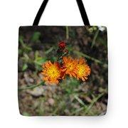 Orange Wild Flowers Tote Bag