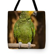 Orange-winged Amazon Parrot Tote Bag by Adam Romanowicz