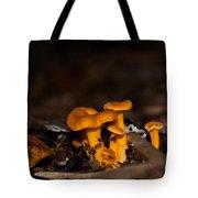 Orange Woodland Mushrooms Tote Bag