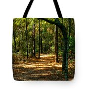 Orangedale Path Tote Bag