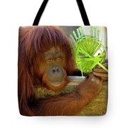 Orangutan Tote Bag by Carolyn Marshall
