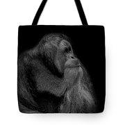 Orangutan Male Looking Up Tote Bag