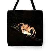 Orb Spider Tote Bag