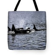 Orcas, The Killer Whales Tote Bag