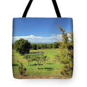 Orchard 1 H Tote Bag