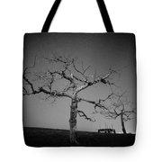 Orchard Bw Tote Bag