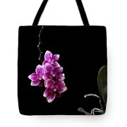 Orchid 1 Tote Bag by T A Davies
