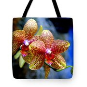 Orchid 17 Tote Bag