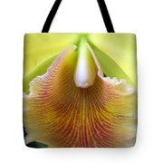 Orchid 21 Tote Bag