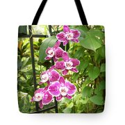 Orchid #4 Tote Bag