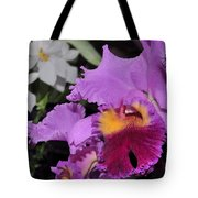 orchid 942 Purple Brassolaeliocattleya  Tote Bag
