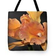 orchid 955 Orange Brassolaeliocattleya Tote Bag
