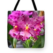 Orchid Aliceara Marfitch Tote Bag