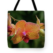 Orchid Aliveness Tote Bag