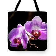 Orchid At Fairchild Gardens Tote Bag
