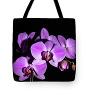 Orchid Blossoms IIi Tote Bag