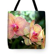 Orchid Delight Tote Bag