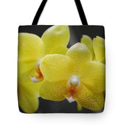 Orchid Family Tote Bag