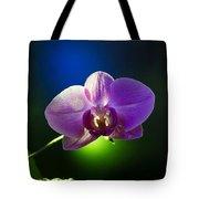 Orchid Flower On Black Background Tote Bag