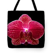 Orchid On Black 2 Tote Bag