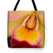 Orchid Painting Tote Bag