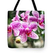 Orchid Phalaenopsis Carnival Bonsall Tote Bag