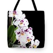 Orchid Phalaenopsis White Flower Tote Bag