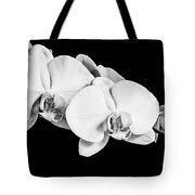 Orchid - Bw Tote Bag