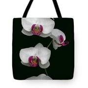 Orchid Sequence  Tote Bag