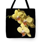 Orchid Set Against Black. Tote Bag