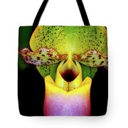 Orchid Study One Tote Bag