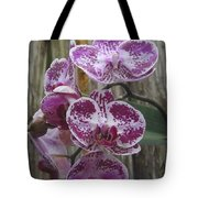 Orchid With Purple Patches Tote Bag