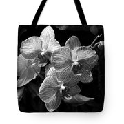 Orchids In Black And White Tote Bag