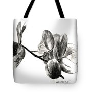Orchids In Black Tote Bag