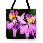 Orchids In Costa Rica Tote Bag