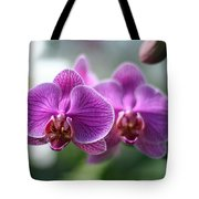Orchids In Flight Tote Bag