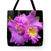 Orchids In Fuchsia  Tote Bag