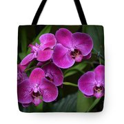 Orchids In Vivid Pink  Tote Bag