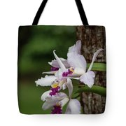 Orchids On A Tree Tote Bag
