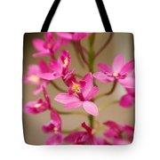 Orchids On Stem Tote Bag