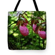Orchids On The Ma At Tote Bag