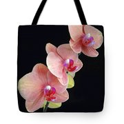 Orchids Reach For The Rainbow Tote Bag