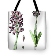 Orchis Militaris, The Military Orchid Tote Bag