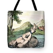 Ordeal By Water Tote Bag