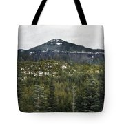 Oregon Cascade Range Forest Tote Bag