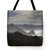 Oregon Coast #4 Tote Bag