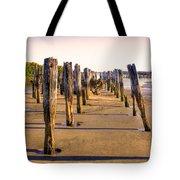 Oregon Coast Pilings Tote Bag