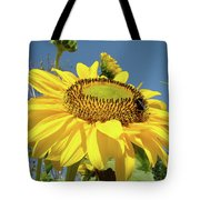 Oregon Gardens Silverton Sunflower Honeybee Baslee  Tote Bag