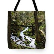 Oregon River Tote Bag