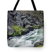 Oregon's Dillon Falls Tote Bag